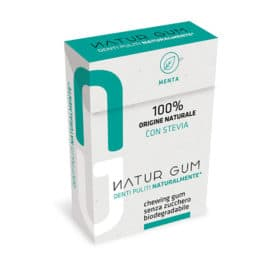 Natur Gum Mint with stevia (20 g)